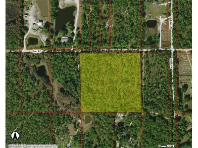 Naples Residential Lots & Land For Sale: 0000 Platt Rd