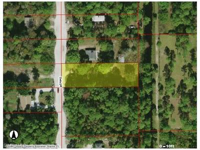 Naples Residential Lots & Land For Sale: Xxxx Della Dr