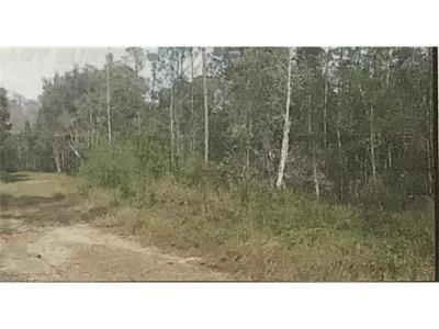 Bonita Springs Residential Lots & Land For Sale: 24265 Rocky Rd