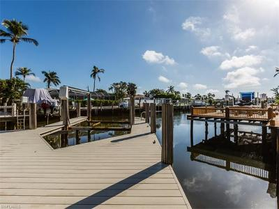 Marco Island Single Family Home For Sale: 795 Willow Ct