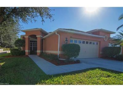 Fort Myers Single Family Home For Sale: 7207 Winkler Rd