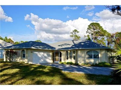 Bonita Springs Single Family Home For Sale: 28405 Mango Dr
