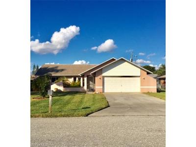 Cape Coral Single Family Home For Sale: 1341 NE Van Loon Ter