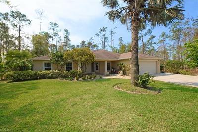 Naples Single Family Home For Sale: 2040 Keane Ave