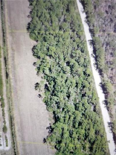 Estero Residential Lots & Land For Sale: 000 Carter Rd