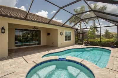 Fort Myers Single Family Home For Sale: 13581 Palmetto Grove Dr