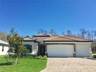 Fort Myers Single Family Home For Sale: 11855 White Stone Dr