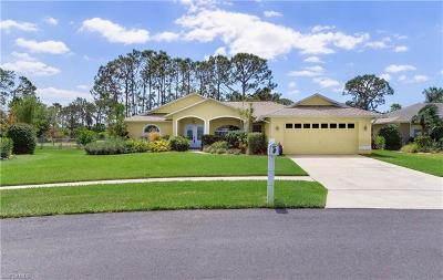 Fort Myers Single Family Home For Sale: 9383 Crocus Ct