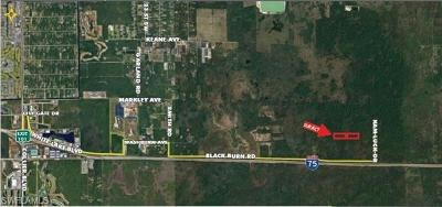 Naples Residential Lots & Land For Sale: 17+/- Acrs Kam Luck Drive