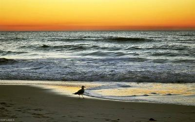Condo/Townhouse For Sale: 377 Vanderbilt Beach Rd #303