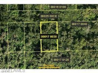 Estero Residential Lots & Land For Sale: 4241 Santiago St