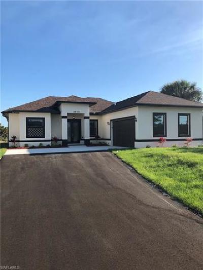 Naples Single Family Home For Sale: 3440 Randall Blvd