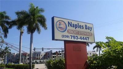 Naples Residential Lots & Land For Sale: 750 River Point Drive