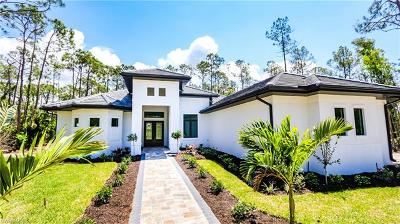 Bonita Springs Single Family Home For Sale: 25231 Pinson Dr
