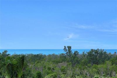 Naples FL Condo/Townhouse For Sale: $825,000