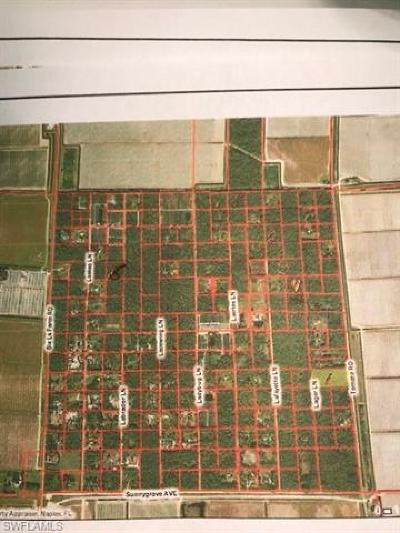 Naples Residential Lots & Land For Sale: Laertes Ln