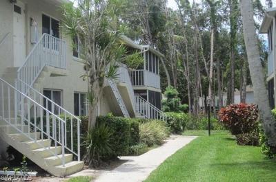 Naples Condo/Townhouse For Sale: 216 Palm Dr #unit 5