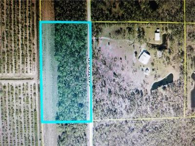 Estero Residential Lots & Land For Sale: 20350 Carter Rd