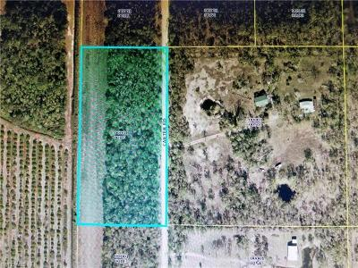 Estero Residential Lots & Land For Sale: 00 Carter Rd