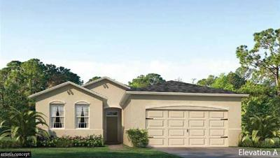 Cape Coral Single Family Home For Sale: 2517 SW 24th Ct