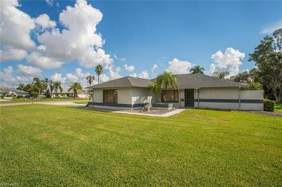 Fort Myers Single Family Home For Sale: 18933 Pine Run Ln