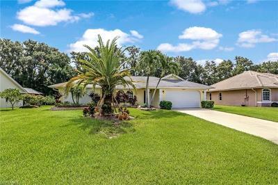 Bonita Springs Single Family Home For Sale: 28383 Tasca Dr
