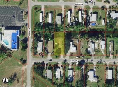Naples Residential Lots & Land For Sale: 160 Kathy Ln