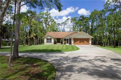Naples Single Family Home For Sale: 191 NW 27th St