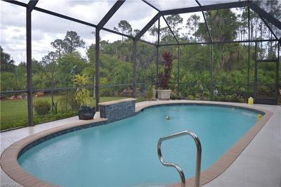 Naples Single Family Home For Sale: 1960 Blue Sage Dr