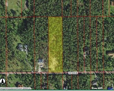 Naples Residential Lots & Land For Sale: 4045 SE 12th Ave