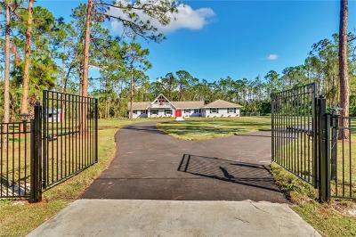 Naples Single Family Home For Sale: 620 NW 29th St