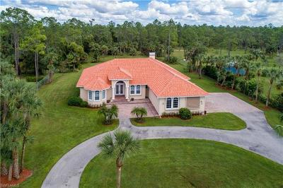 Naples Single Family Home For Sale: 440 SE 2nd St