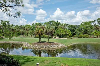 Naples FL Condo/Townhouse For Sale: $205,000