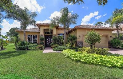 Naples Single Family Home For Sale: 8878 Pinto Ct