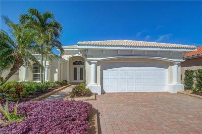 Estero Single Family Home For Sale: 19832 Casa Verde Way