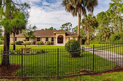 Naples Single Family Home For Sale: 2020 E Jung Blvd