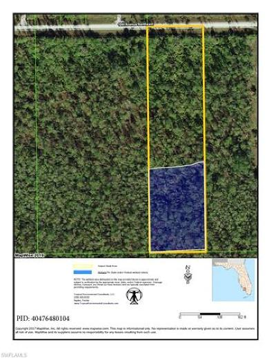 Naples Residential Lots & Land For Sale: NE 12th Ave