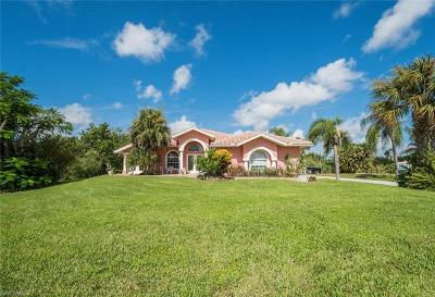 Bonita Springs Single Family Home For Sale: 12269 Isabella Dr