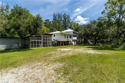 Fort Myers Single Family Home For Sale: 10851 Bromley Ln