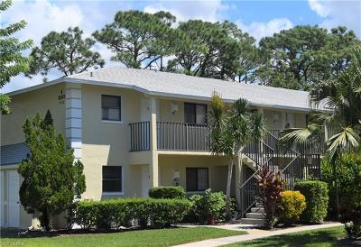Bonita Springs Condo/Townhouse For Sale: 28150 Pine Haven Way #25