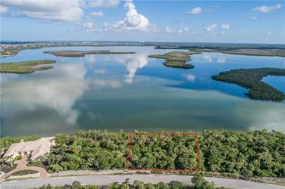Marco Island Residential Lots & Land For Sale: 1205 Blue Hill Creek Dr