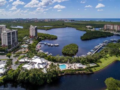 Naples Residential Lots & Land For Sale: 242d Wiggins Bay Dr
