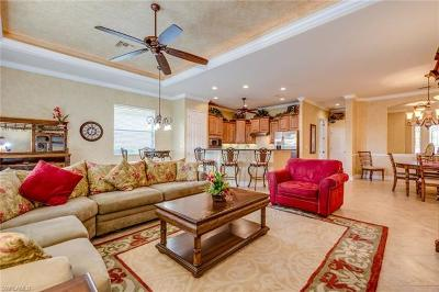 Single Family Home For Sale: 10504 Heritage Bay Blvd