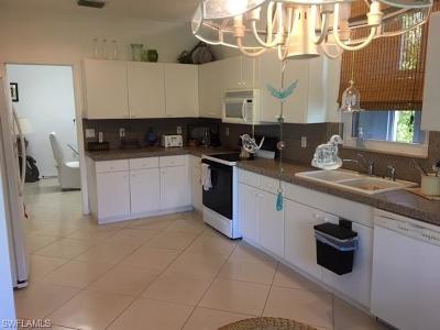 Bonita Springs Single Family Home For Sale: 9377 Lake Abby Ln
