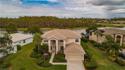 Estero Single Family Home For Sale: 21524 Belhaven Way