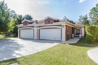Bonita Springs Single Family Home For Sale: 8525 Tamara Ct