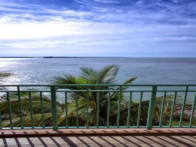 Belize Condo/Townhouse For Sale: 970 Cape Marco Dr #404