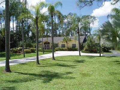 Naples Single Family Home For Sale: 491 NW 31st St
