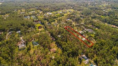 Naples Single Family Home For Sale: 5885 N Hidden Oaks Ln