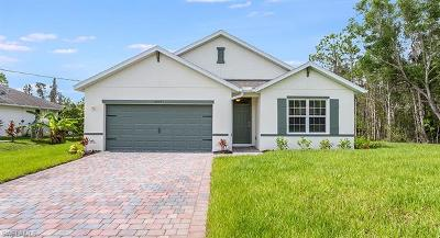 Fort Myers Single Family Home For Sale: 6572 Dabney St